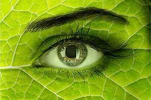 beeldbewerking oog
