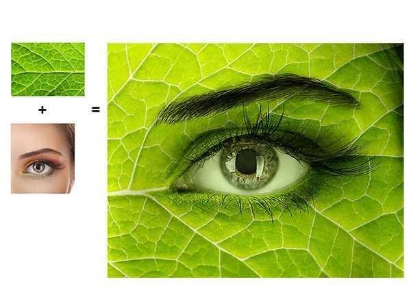 Beeldmontage oog