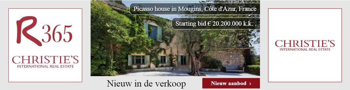 dynamische banner r365 picasso house
